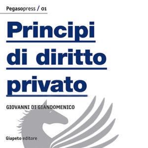 diritto privato principi